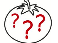 Projekttag Tomate